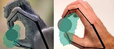 A better grasp on primate grip - http://scienceblog.com/77929/a-better-grasp-on-primate-grip/