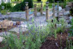 See how to lay concrete pavers on the ground to make your backyard look incredible: Easy A, How To Lay Concrete, Concrete Pavers, Diy Water Feature, Backyard Water Feature, Hogwarts, Stencils, Small Water Features, Building A Pond