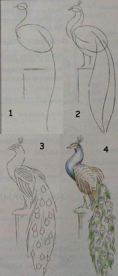 Esto les ayudara a dibujar un pavoreal muy bien ¡¡¡Intentenlo!!! ^¬^
