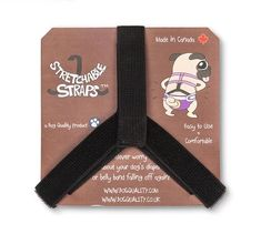 Dog Diaper & Belly Band Stretchable Straps | Dog Quality Belly Bands For Dogs, Dog Wrap, Pet Style, Dog Lady, Boston Terrier Dog, Dog Diapers, Puppy Face, Training Your Puppy, Dog Care Tips