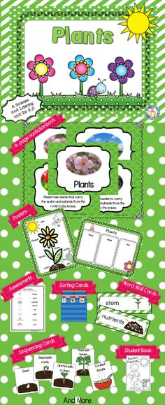Plants ~ A  K/1 Science and Literacy Unit