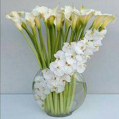 Alcatraces y orquídeas blancas