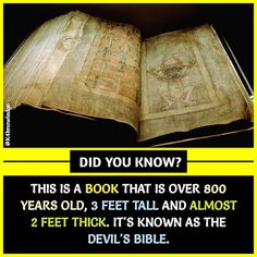 my mother calls me a devil 😈 True Interesting Facts, Interesting Facts About World, Some Amazing Facts, Intresting Facts, Unbelievable Facts, Wow Facts, Real Facts, Wtf Fun Facts, True Facts
