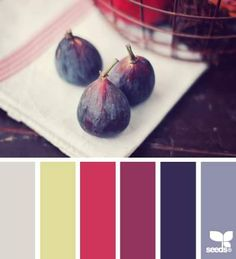 DesignSeeds® FB { produced palette }  March 14 2013