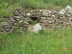 Bolo ventanero en muro de piedra seca en fajas de campos de cultivo. Marca la red energética Curry.
