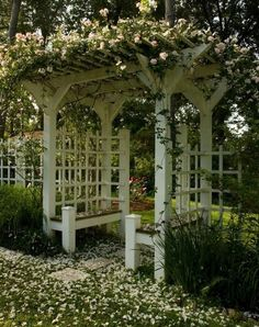 Eudora Welty's backyard trellis, covered with roses, Jackson Mississippi.
