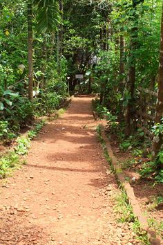 sahakari spice farm in goa: visit to sahakari spice farm in Ponda, Goa