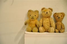 antique teddy bears