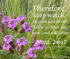 MATTHEW - Therefore keep watch, because you do not know on what day your Lord will come. Inspirational Bible Quotes, Scripture Quotes, Bible Verses, Matthew 18 20, Jesus Second Coming, Worship The Lord, Sisters In Christ, In God We Trust, Nice Quotes