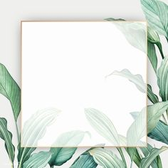 Gold frame on a tropical leaves background vector Flower Background Wallpaper, Tropical Background, Framed Wallpaper, Leaf Background, Flower Backgrounds, Background Patterns, Textured Background, Wallpaper Backgrounds, Iphone Wallpaper