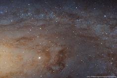 Hubble's high-definition panoramic view of a portion of the Andromeda Galaxy (click twice to see individual stars). The largest NASA Hubble Space Telescope Hubble Pictures, Hubble Images, Astronomy Pictures, Helix Nebula, Orion Nebula, Fotos Do Hubble, Spiral Galaxy, Whirlpool Galaxy, Star Cluster