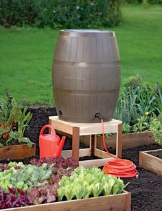 Handy 75-gallon Rain Barrel with four ports for connecting multiple hoses or filling watering cans. gardeners.com