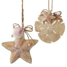 Found it at Wayfair - 2 Piece Shell and Sand Dollar Ornament Set