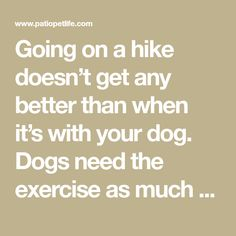Hiking intelligently with your pooch Pet Tips, Your Dog, Hiking, Good Things, Exercise, Beach, Dogs, Nature, Walks