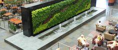 une terrasse avec mur végétal