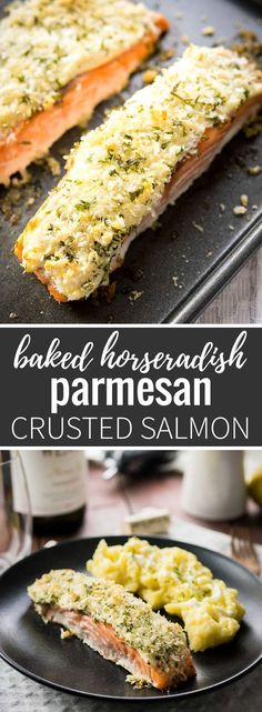 This Horseradish Parmesan crusted Salmon is baked in the oven and only takes 20 minutes to make. A dinner fancy enough for guests but also easy enough for weeknights! #seafoodrecipes