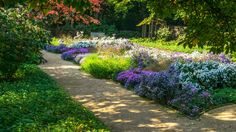 There are plenty of ways to appreciate the beauty of spring. New Jersey is home to a variety of beautiful public gardens.
