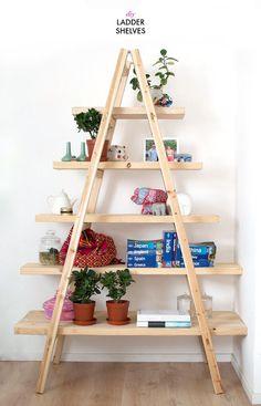 http://apairandasparediy.com/2014/10/diy-ladder-shelves.html