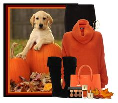 """""""Puppies and Pumpkins"""" by lulurose98 ❤ liked on Polyvore featuring Wallis, Gabriella Rocha, DKNY, Pieces, Anastasia and Yves Saint Laurent"""