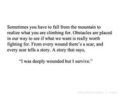 Sometimes you have to fall from the mountain to realize what you are climbing for. Obstacles are placed in our way to see if what we want is really worth fighting for. From every wound there's a scar, and every scar tells a story. A story that says, I was deeply wounded but I survive.