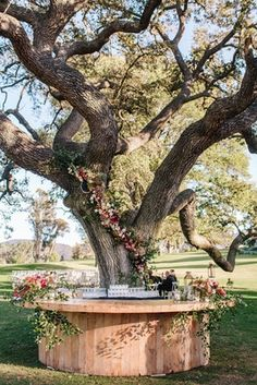 Bar Around Tree Photography: Heather Kincaid Read More: www. Wedding Locations California, California Wedding, Ojai California, Landscape Design, Garden Design, Tree Bar, Diy Jardin, Garden Cafe, Vegetables Garden