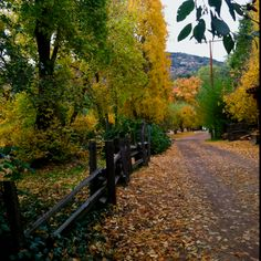 Cant wait for this weekend with my hubby - Fall in Oak Glen California