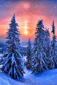 "Photo from album ""елки"" on Yandex. Merry Christmas To All, Blue Christmas, Winter Christmas, Christmas Cards, Christmas Trees, Christmas Decor, Snow Gif, Gif Photo, Let It Snow"