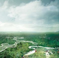 Yi Yvonne Weng The Layer – Explorative Canopy Trail Foster Partners, Architecture Magazines, Tree Canopy, Modern Metropolis, Amazon Rainforest, Tree Tops, Built Environment, Sky High, View Image