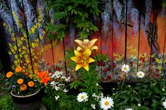 This was a very old fence, around our concrete patio, not much cared for before we bought our house.   I decided to paint murals on it, as a backdrop for our real garden in the summer and also to add some color to the landscape during the long drab winter months.