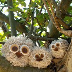Pom Pom Owl Babies