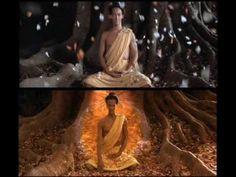 Meditação do Budismo Tibetano - ORIGINAL (+playlist)