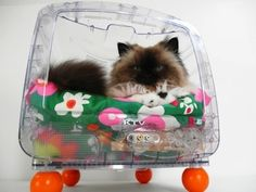 21 Really Cool Pet Beds Made From Old Electronics
