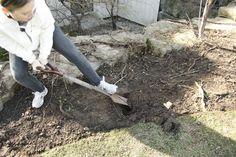 ssshhhhhhovel   #BWtreeplant #earthday2013