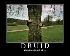 Druid
