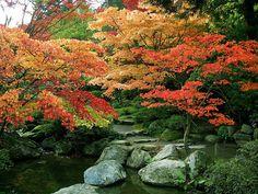 Japanese Garden, Seattle Arboretum, Seattle, Washington State.