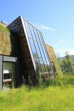 Modern skylight/glass wall extension