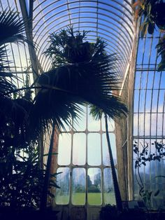 View from the Palm House in Kew Gardens