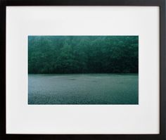 This Rainfall Upstate, NY, photo by Chikara Umihara will add a jewel-toned splash with a side of zen to the walls.