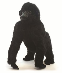 Hansa 4345 Gorilla Baby Standing UK DELIVERY ONLY