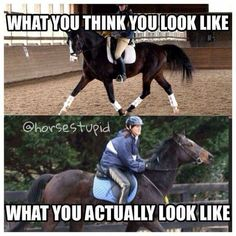 Lol probably I almost always feel like I'm leaning forward to much - Horses Funny - Funny Horse Meme - - Lol probably I almost always feel like I'm leaning forward to much The post Lol probably I almost always feel like I'm leaning forward to much appear Funny Horse Memes, Funny Horse Pictures, Funny Horses, Cute Horses, Horse Love, Beautiful Horses, Funny Animals, Horse Humor, Beautiful Cats