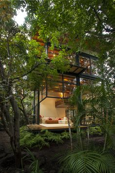Lush open modern home                                                                                                                                                                                 More