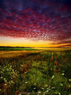 Great textures in the sky and foreground. Beautiful photo of a prairie.