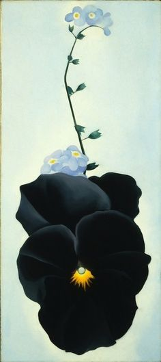 georgia okeefe black iris pics  | Georgia O'Keeffe