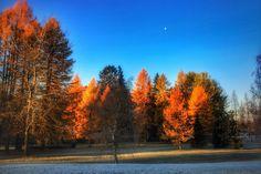 United colors of Benett... uhm... nature... #forssa