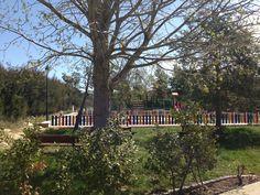Entorno del Parque Infantil en La Yesa