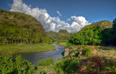 Waimea Valley by David Pope on 500px