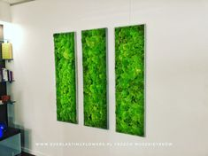 Moss decor
