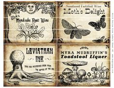 Witch Wine Labels 4x5 digital collage sheet set for potions Halloween dinner parties party decorations postcard mail art wine bottle label. $6.00, via Etsy.