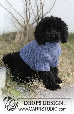 Free Pattern: Dog Coat