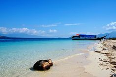 Beach at Babi Island. Flores